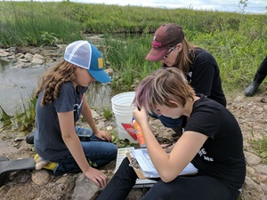 High school students examine insects from a pond