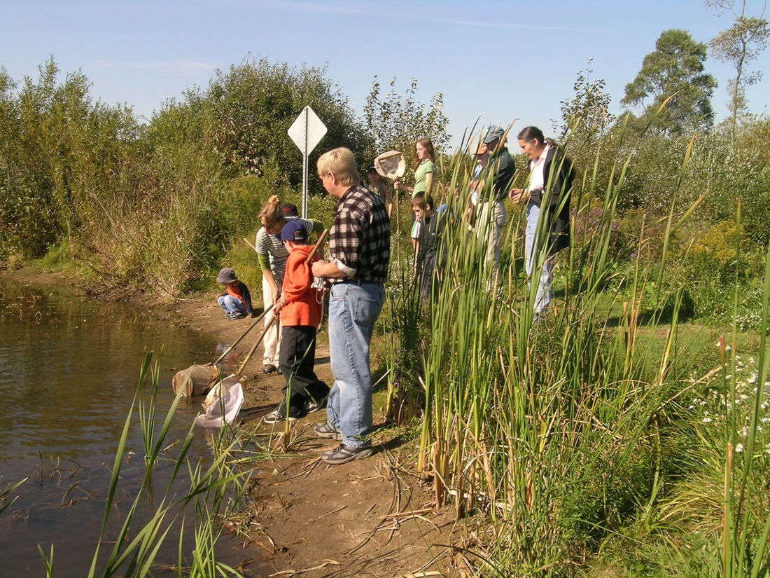 Kids with nets at edge of wetland