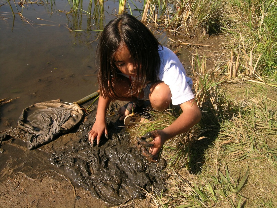 Girl examining mud for insects