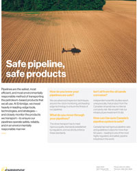 Safe Pipelines Safe Products